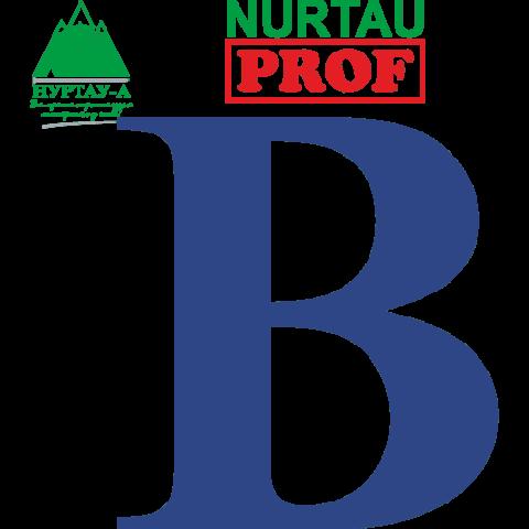 Пароизоляционная пленка NURTAU PROF B (60м2)